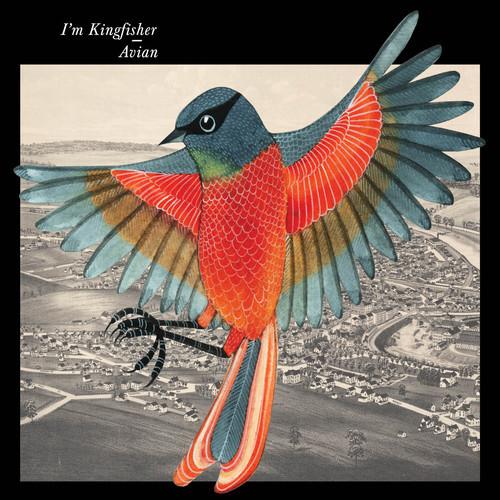 avian-cover